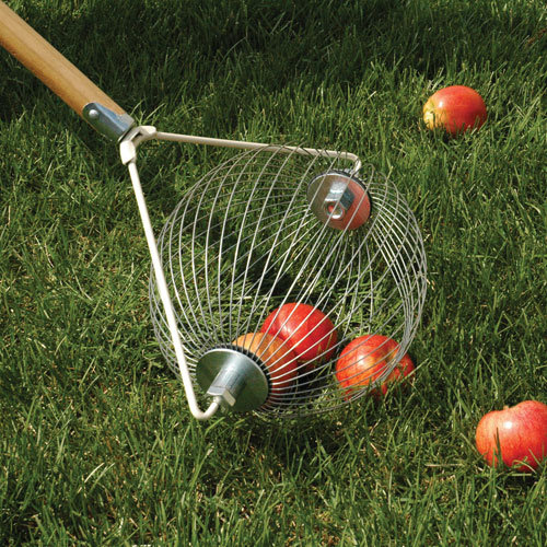 Apple Picker Upper Wizard